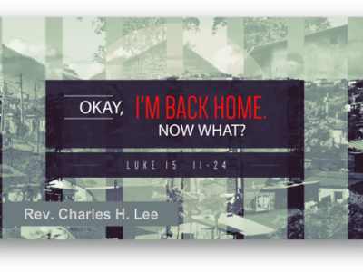 Okay, I'm Back Home. So Now What?